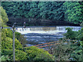 SD7706 : River Irwell Weir by David Dixon