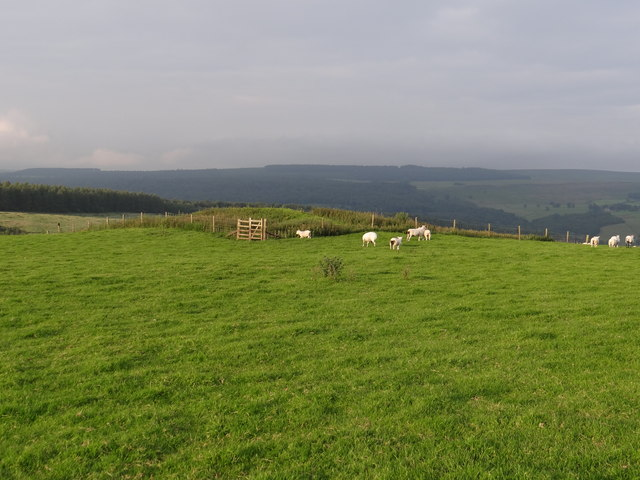 Tumulus on Calton Pastures