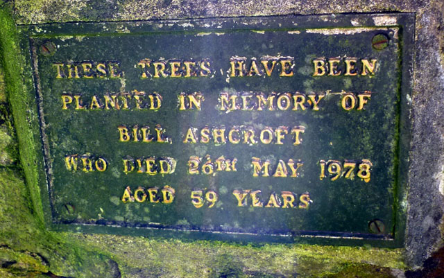 Plaque on the Bill Ashcroft memorial, Cotterdale West Forest
