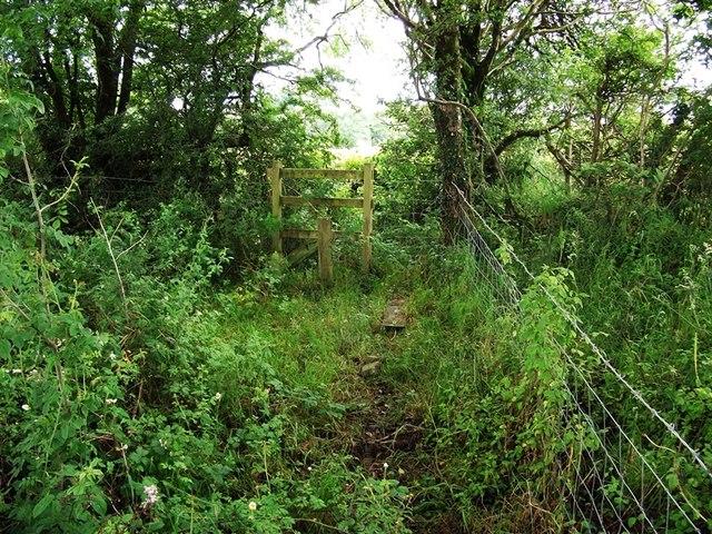 Carmarthenshire Footpath