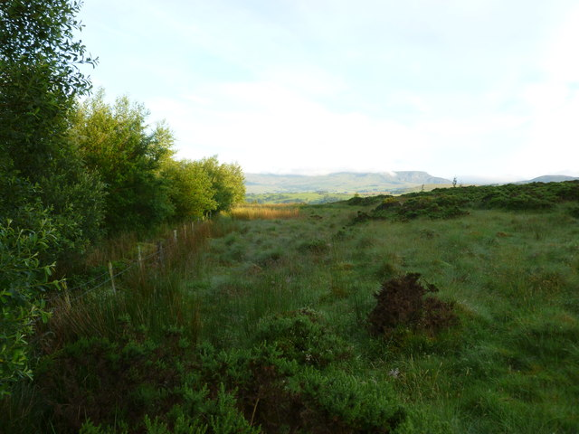 South of Lake Bala