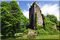 V8870 : Castles of Munster: Dunkerron, Kerry by Mike Searle