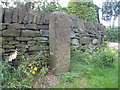 SE2008 : Benchmark on the milestone at Upper Cumberworth by John Slater
