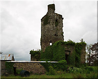 W9399 : Castles of Munster: Mocollop, Waterford by Mike Searle