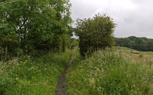 Path at west side of Spennymoor
