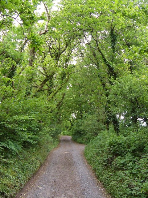 Green lane near Moreleigh Mount