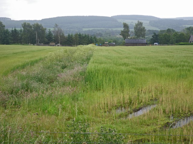 Soggy fields at the east of Drumoak