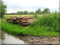 TL8033 : Logs ready for collection beside Dynes Hall Road by Evelyn Simak
