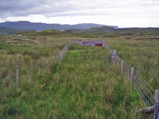 Moorland sheep pen