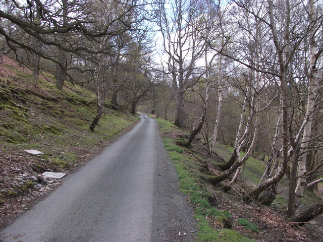 Lane onto the mountain