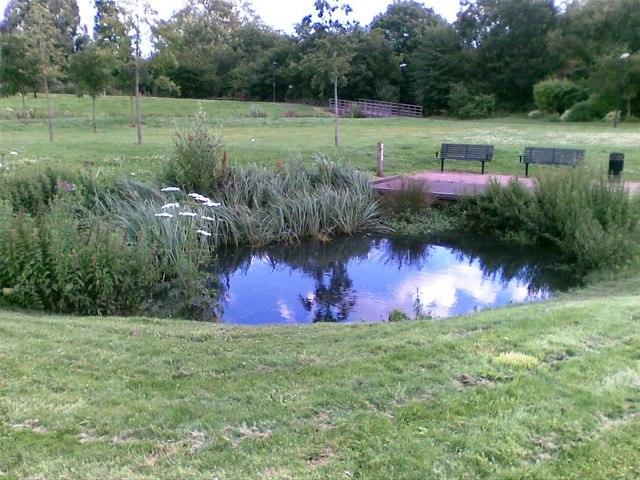 Pond, Ladywell Fields