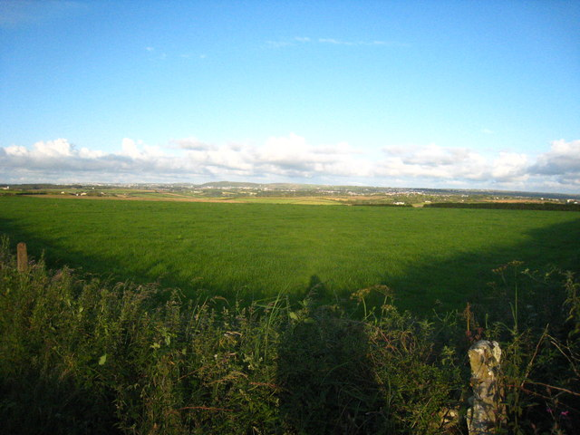 Field near Butney Corner