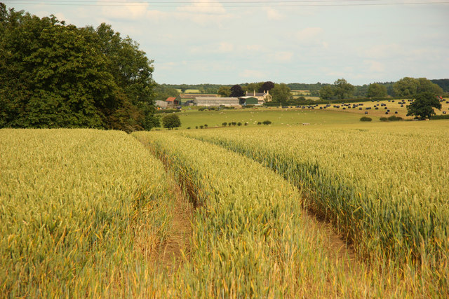Farmland near Irnham