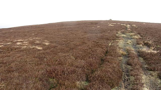Birks Hill
