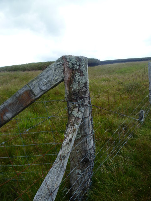 Fence Junction