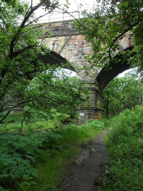 Railway bridge over the Luggie Water
