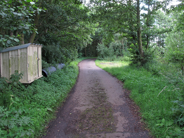Track to The Alders