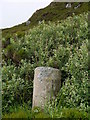 NR5908 : Milestone Near Mull Of Kintyre Lighthouse by James T M Towill