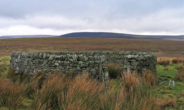 Sheepfold north of Midhopelaw Pike
