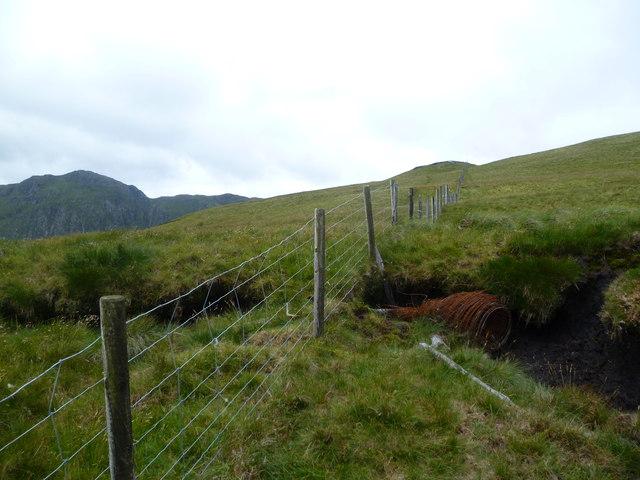 Fence on Foel Hafod-fynydd