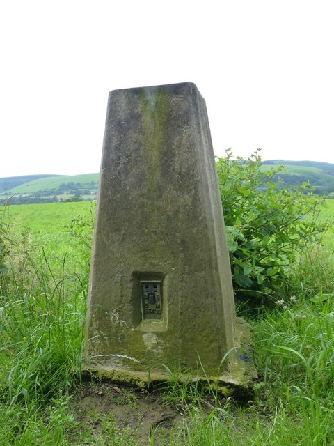 Cwm Head trig - detail