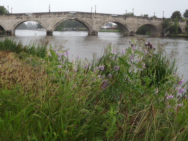 Chertsey Bridge from the South