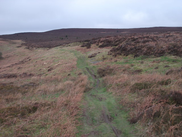 Track above Rock Farm