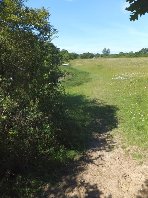 Footpath on north bank of Ningwood Lake