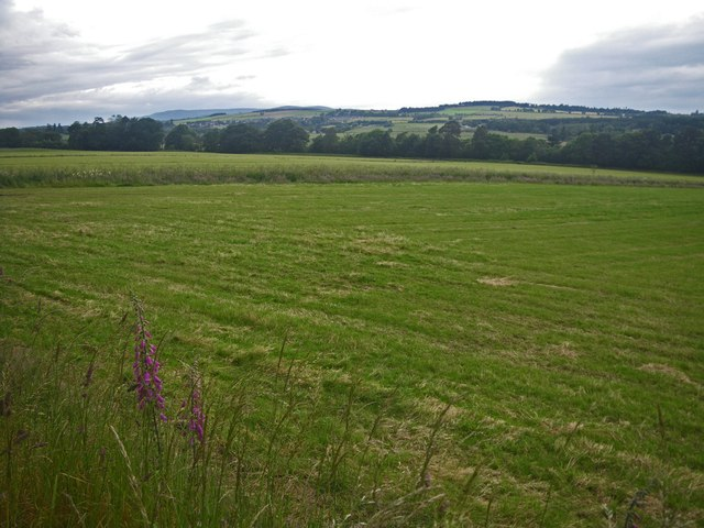 Fields near Tilbouries Lodge