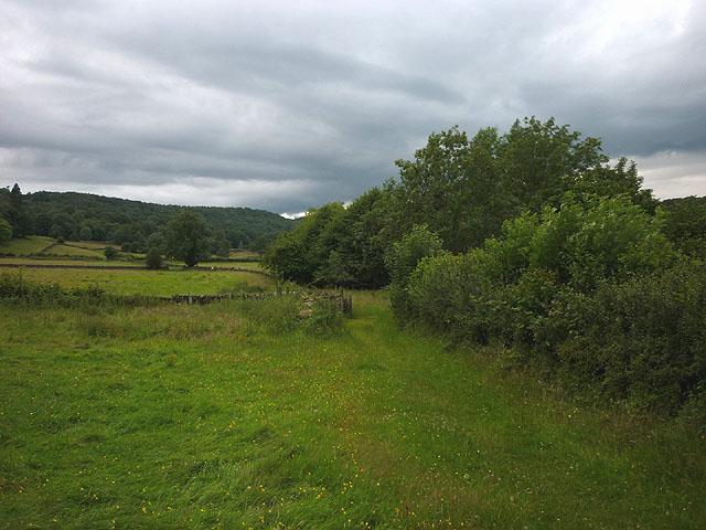 The Hollins to Great Hartbarrow bridleway