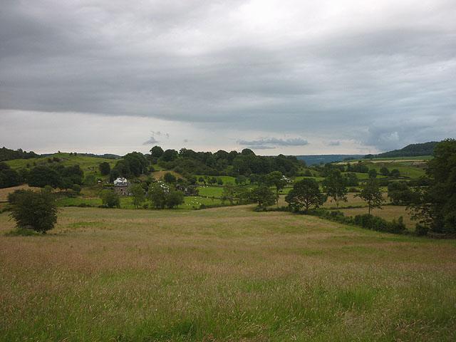 Pastureland near Hollins