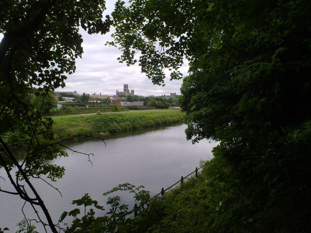 View of the city from Pelaw Wood