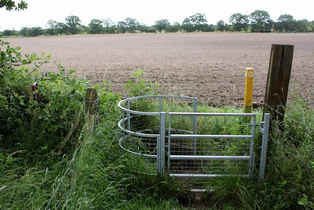 Footpath at Thorney