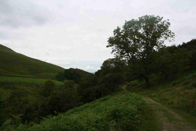 Bridleway in Barbondale