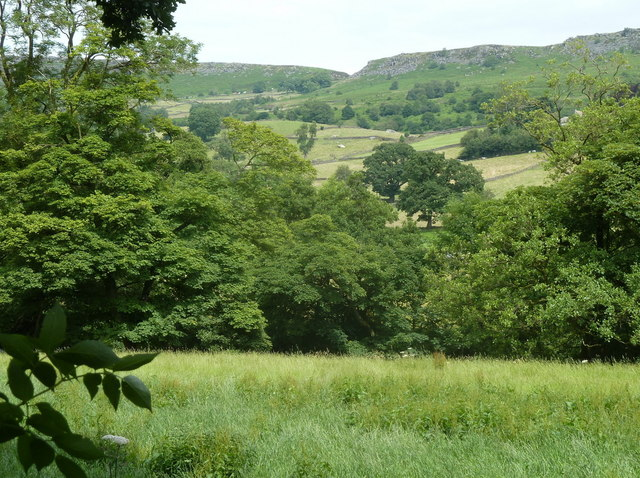 Field and hillside view