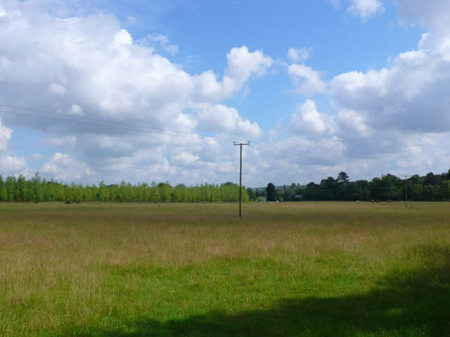 Field at Long Acres farm