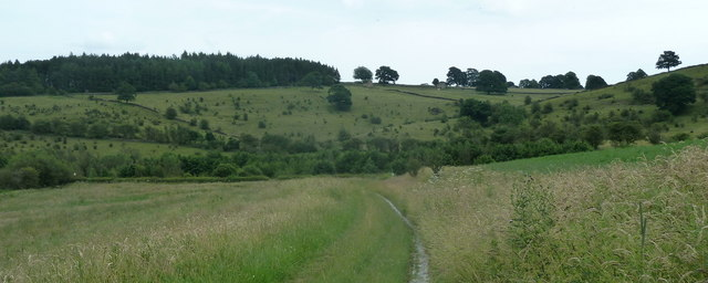 Path to the A619 with hillside beyond