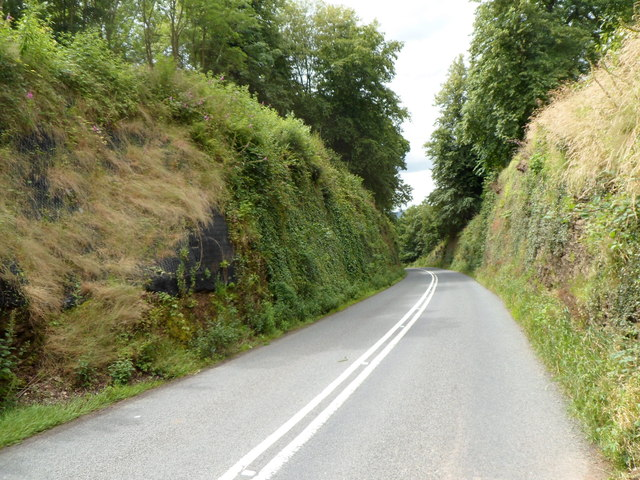 Road to the Clytha Arms ascends through a cutting
