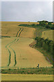 SU4879 : Field and track on Nutfield Down by David Lally