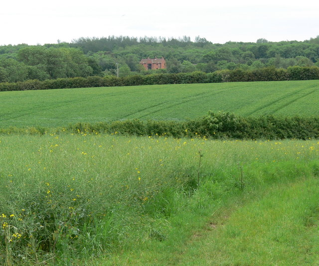 Farmland near Windyridge Farm