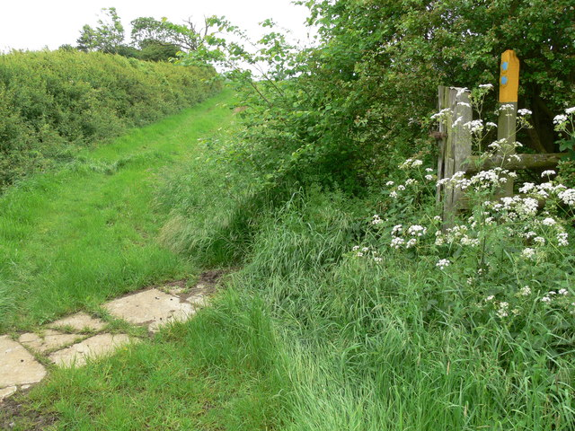 Public bridleway near Windyridge Farm