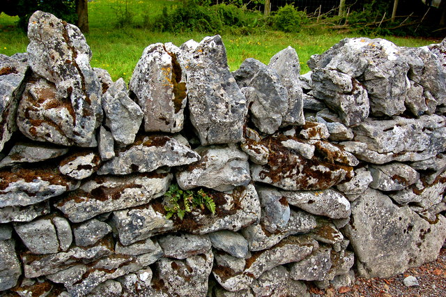 Bunratty Park - Mortarless Stone Wall south of Event Field