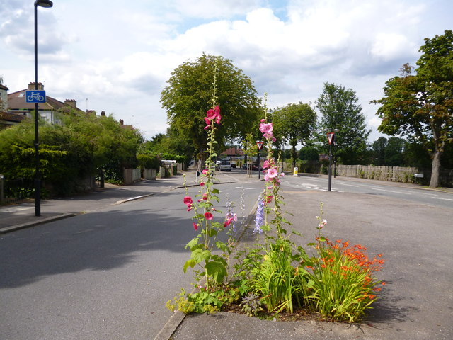 Dulwich:  Road junction with flowers