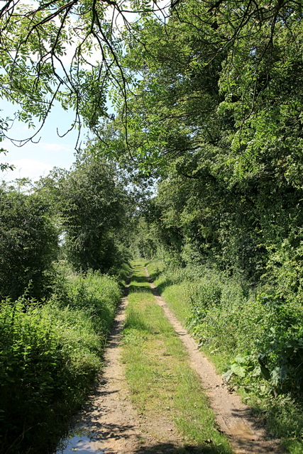 Thorofare Lane (Track) to Knapwell