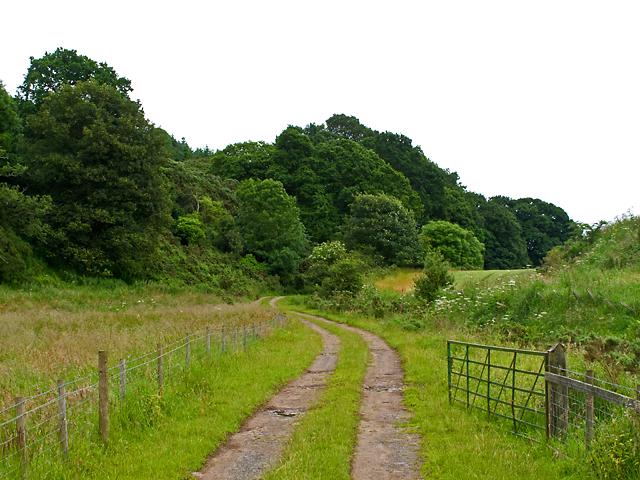 Track near Black Hill