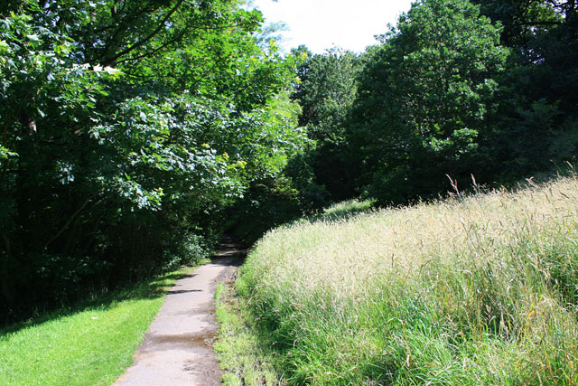 Path in Firth Park
