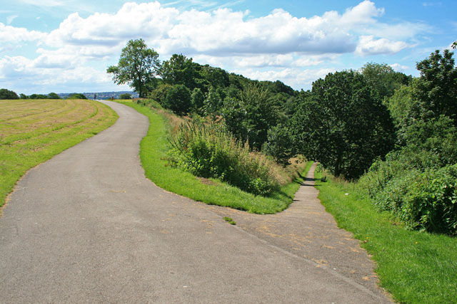 Forked path in Firth Park