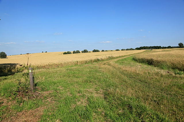 Bridleway from Boxworth to Lolworth