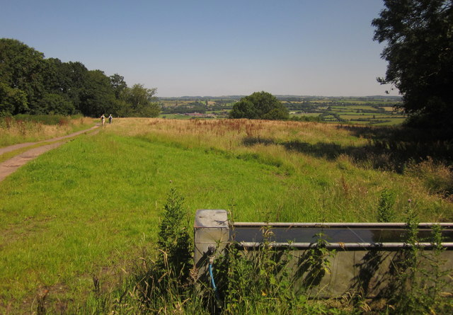 Trough and field, Kings Hill
