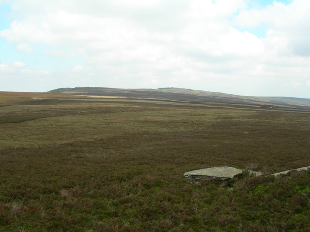 View north from the Wheel Stones